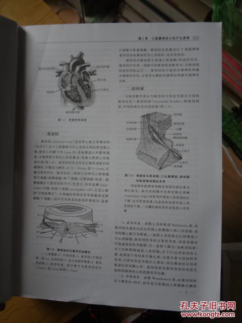 临床实用心电图学 吕聪敏等编 科学出版社9787030488138