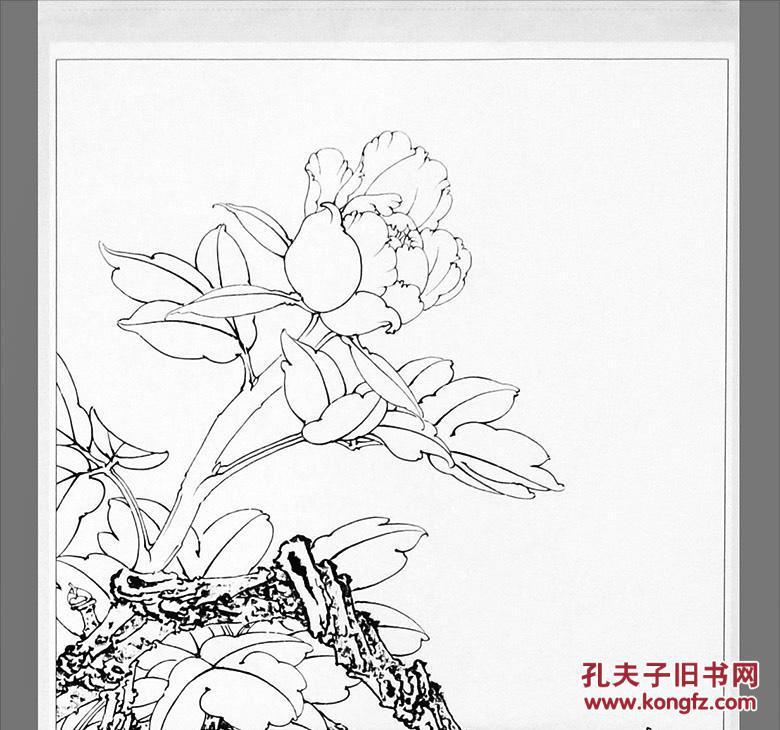 李晓明工笔画稿线描底稿画谱 李晓明画牡丹荷花 国画白描练习教程图片