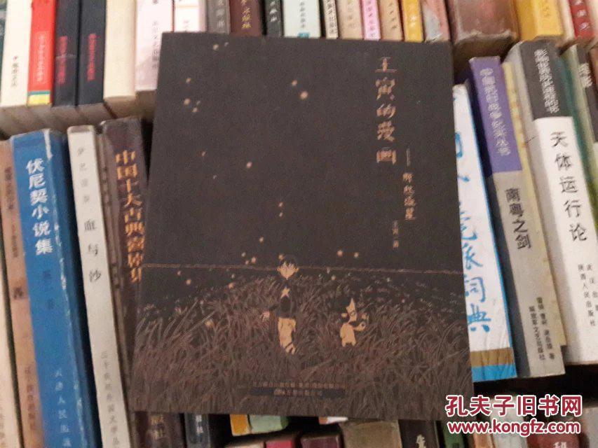 王寅的漫画:那些流星签名本小英雄漫画图片