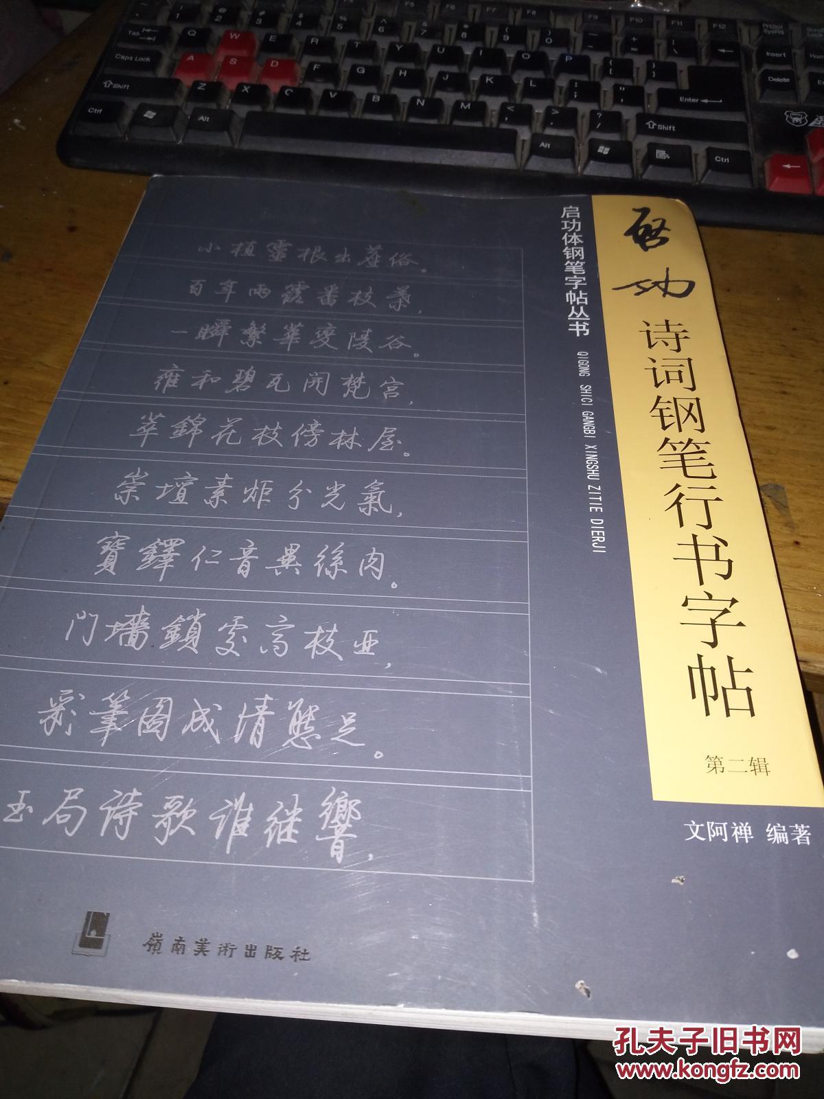 启功诗词钢笔行书字帖. 第二辑图片