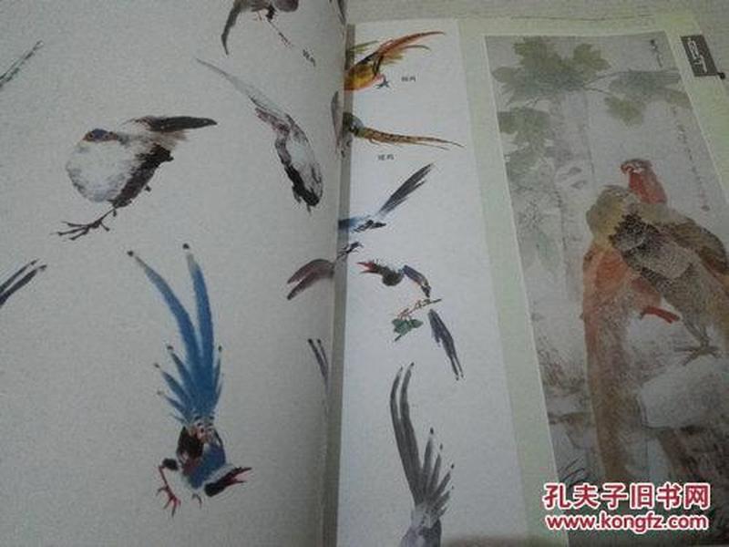 《千姿百态画飞鸟》中国画训练新编系列二 16开 2006年6月1版2印