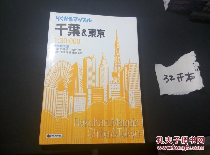 孔网孤本 2016 日文原版 千叶 东京 繁华街道大