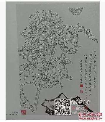 学画宝典 白描花卉/方纪龙/工笔线描底稿 花鸟画作品白描稿临摹稿图片