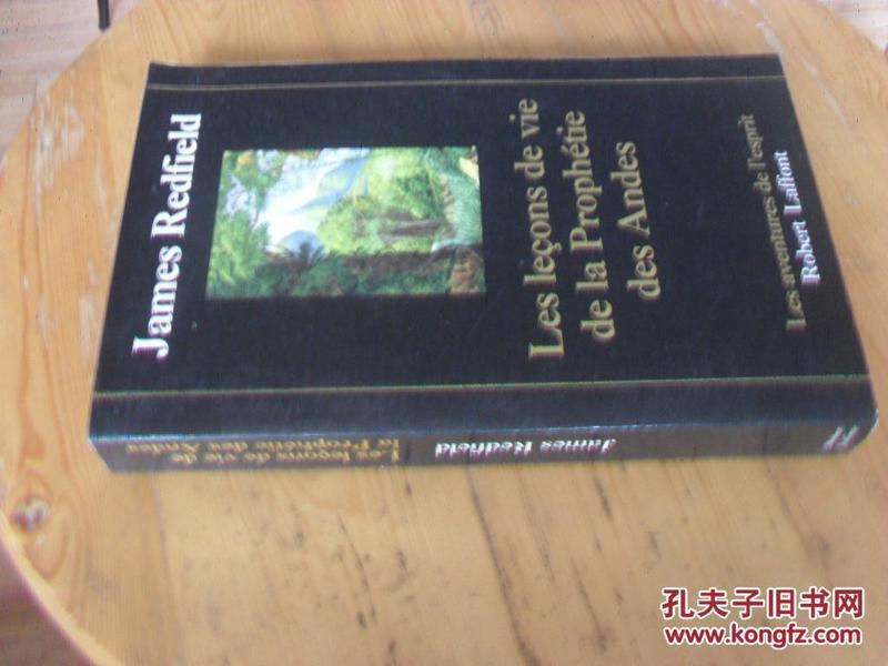 法文原版 Les Leçons de vie de la Prophétie des Andes . James Redfield