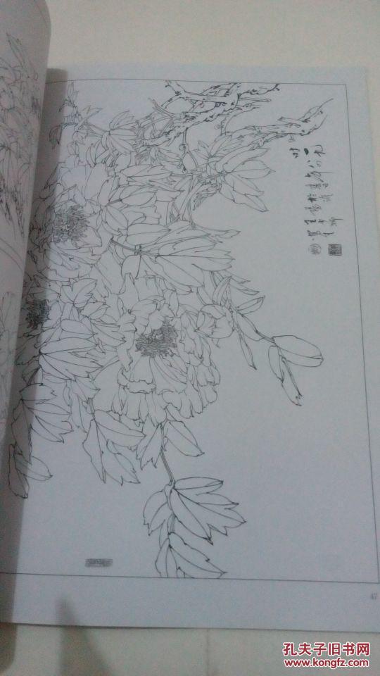 工笔花鸟画名家王少卿白描花卉:牡丹 菊花 杂花 一版一印 仅印刷4000图片