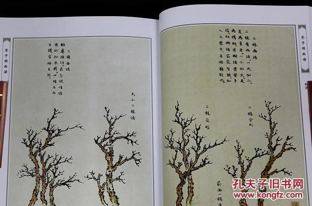 国画竹子 圆形纸