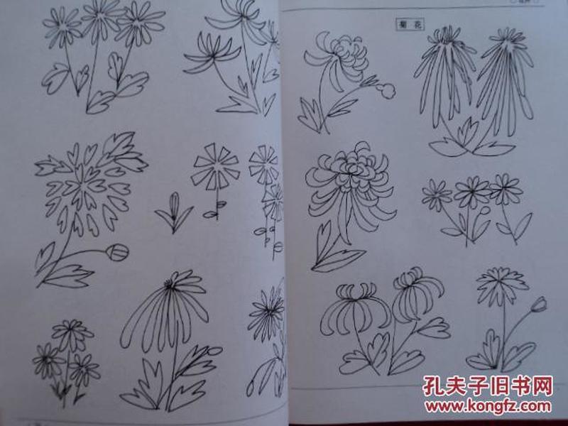 简笔画:动物简笔画,植物简笔画,人物·静物简笔画(全套三册合售) 徐图片