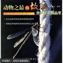 动物的故事(生命的印迹丛书)原版