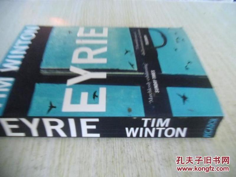 英文原版    Eyrie: A Novel