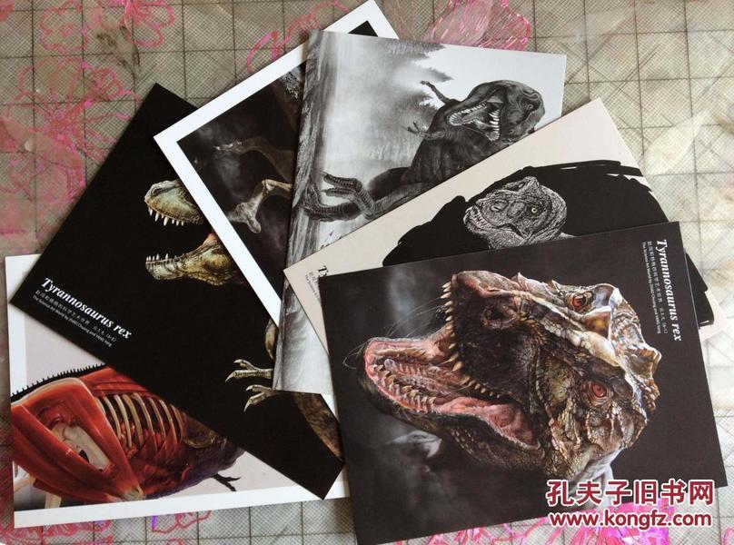 科学艺术<b>明信片</b>之霸王<b>龙</b>(全套6张) <b>恐龙</b>大王