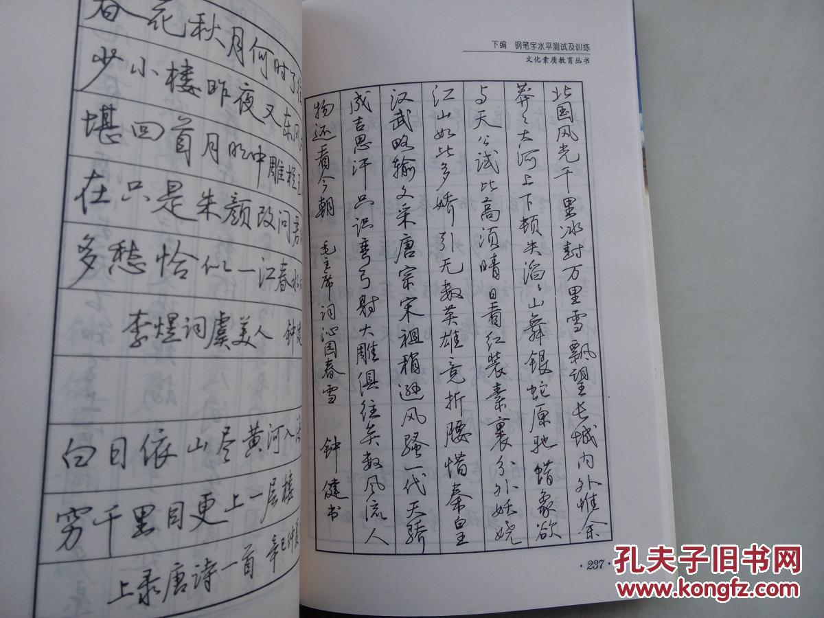 钢笔字训练与测试教程(稀缺书 著名硬笔书法家 字体十分漂亮 )图片