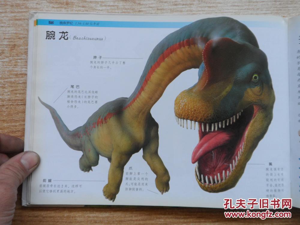 可怕的恐龙及其他史前动物 【大陆所有地区书款满100元包邮】