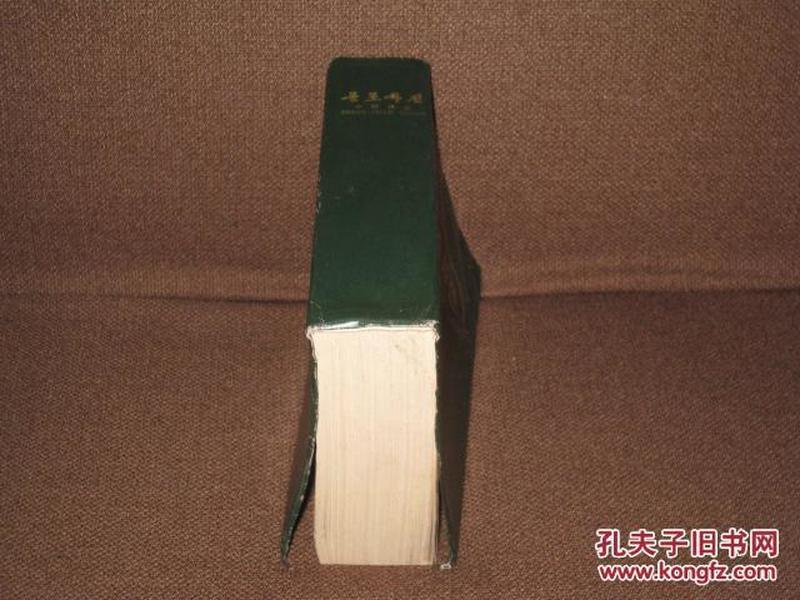 朝鲜文:中朝词典  (1972年出版,1176页)