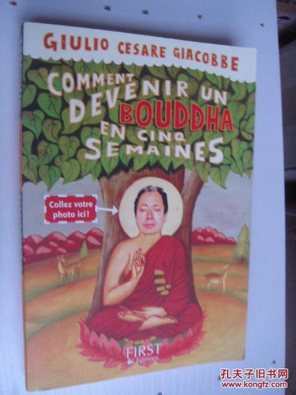 COMMENT DEVENIR UN BOUDDHA EN CINQ SEMAINES,佛学