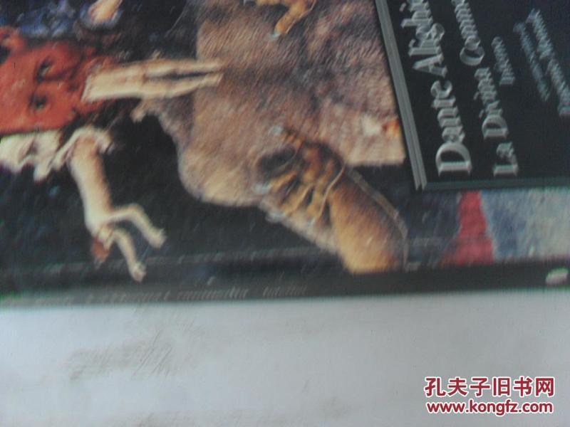 意大利原版   Inferno: La Divina Commedia (Italian Edition)