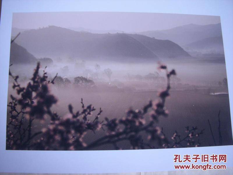 3937 ...摄影家参展照片 【30厘米x21厘米 】