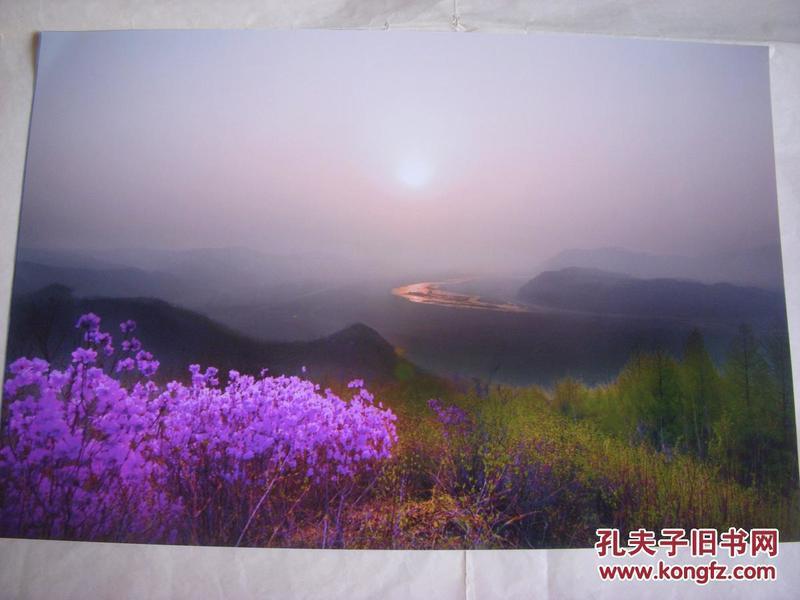 3952 ...摄影家参展照片 【30厘米x21厘米 】