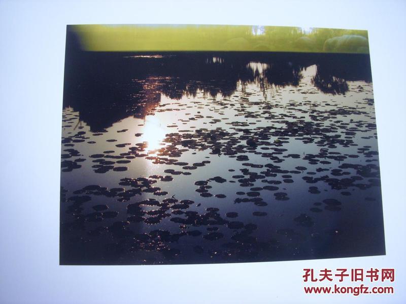 3956 ...摄影家参展照片 【30厘米x21厘米 】