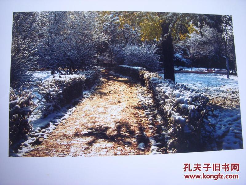 3957 ...摄影家参展照片 【30厘米x21厘米 】