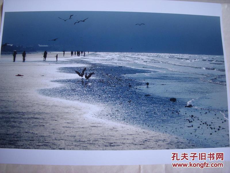 3960 ...摄影家参展照片 【30厘米x21厘米 】