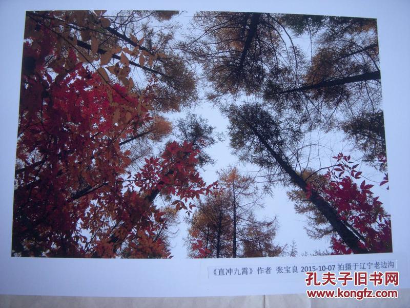 3971 ...摄影家参展照片 【30厘米x21厘米 】