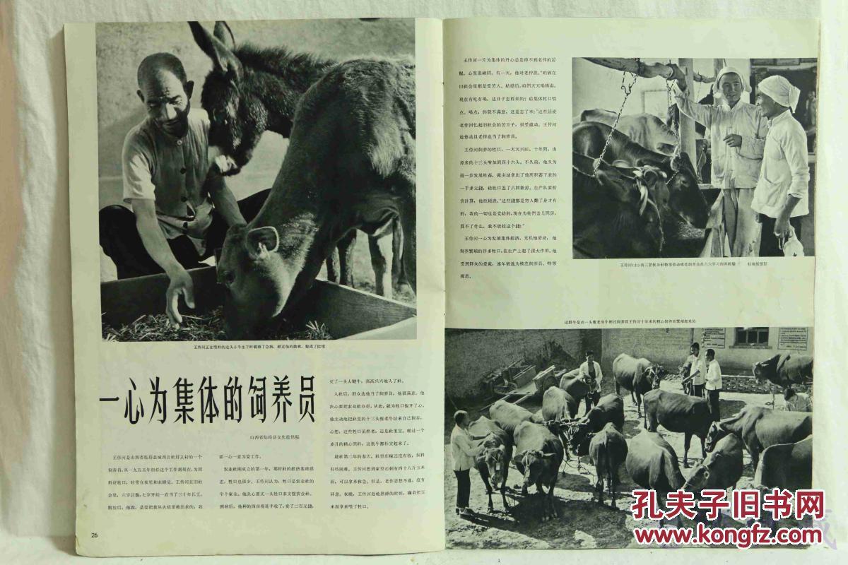 1965年11月 人民画报 一本 内容 庆祝中华人民共和国六十六周年 拉萨