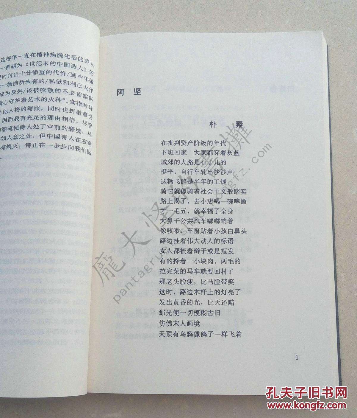 九十年代文学潮流大系:主潮诗歌图片