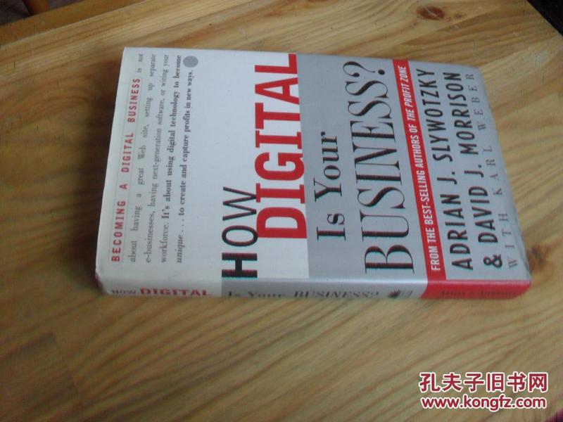 英文原版  How Digital Is Your Business?
