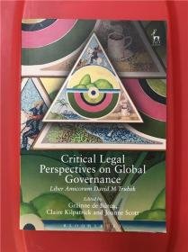 Critical Legal Perspectives on Global Governance (全球治理的批判性法律视角)论文集