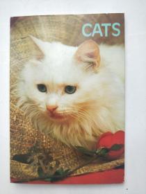 德国金丝猫 明信片 10张1988年汉英第一版 北京邮票厂制