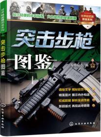 突击步枪图鉴