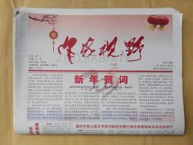 《作家视野》(月报,重庆市作协主办) 2017年1-11期