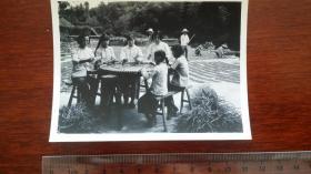 1962南陵县 青年女子加工白芍药摄影老照片