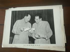 8开宣传画——毛主席和周恩来同志
