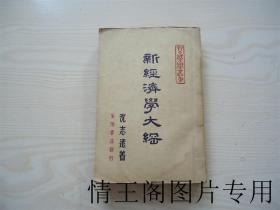 新中国大学丛书:新经济学大纲(增订版)
