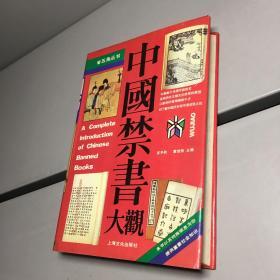中国禁书大观 【精装】【 9品 +++ 正版现货 自然旧 实图拍摄 看图下单】