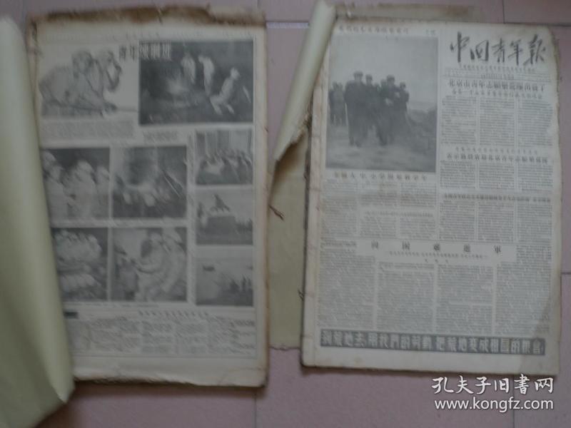 1955年 中国青年报 共71张合订