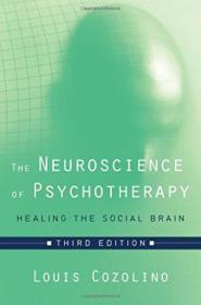 The Neuroscience Of Psychotherapy: Healing The Social Brain (third Edition) (norton Series On Interp