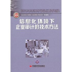 信息化环境下企业审计的技术方法