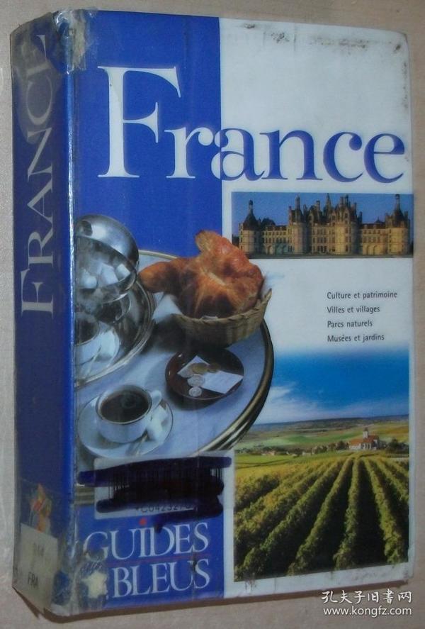 法文原版书 Guide Bleu : France / 2001 de Collectif (Auteur) 全彩色,法国旅游景点实用大全 城市和地点,按地区 区域 指南