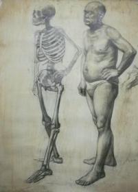 不多见的大幅老素描-男人体与骨架,画功极好,有画家签名