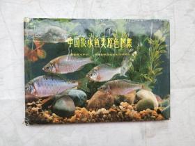 中国淡水鱼类原色图集 第三集