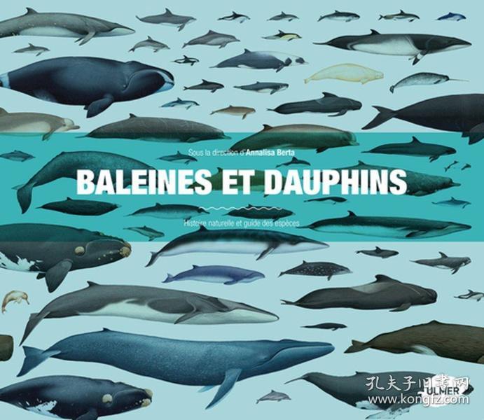 Baleines et dauphins : Histoire naturelle et guide des espèces