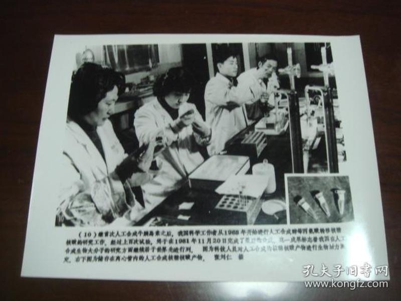 向科技高峰攀登 建国三十五周年重大科技成果集锦 (配合国庆宣传稿之二):10、人工合成生物大分子的研究成果(新华社新闻展览照片1984年)
