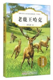 老鹿王哈克(升級版)/動物小說大王沈石溪自選精品集