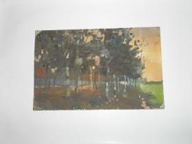 著名油画家顾祝君 早期油画写生:《小树林》两幅(硬纸板正反面各一幅)