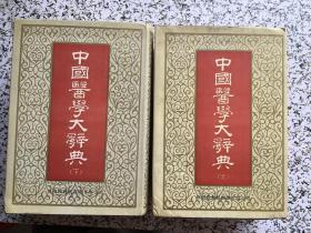 中国医学大辞典  上下