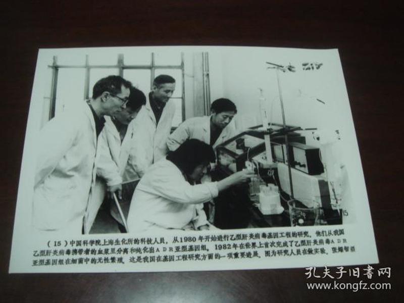 向科技高峰攀登 建国三十五周年重大科技成果集锦 (配合国庆宣传稿之二):15、中国科学院上海生化所的研究人员在做实验(新华社新闻展览照片1984年)