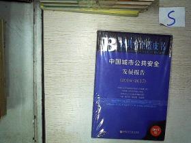 中国城市公共安全发展报告(2016-2017)