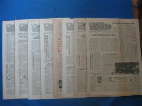 1987年中国青年报 1987年6月11日12日13日14日16日17日18日19日报